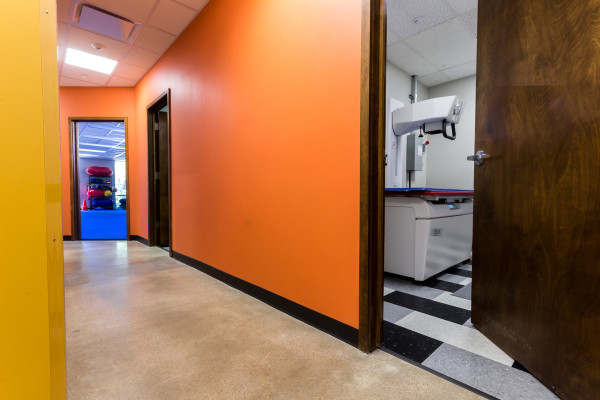 Hallway to xray and agility room
